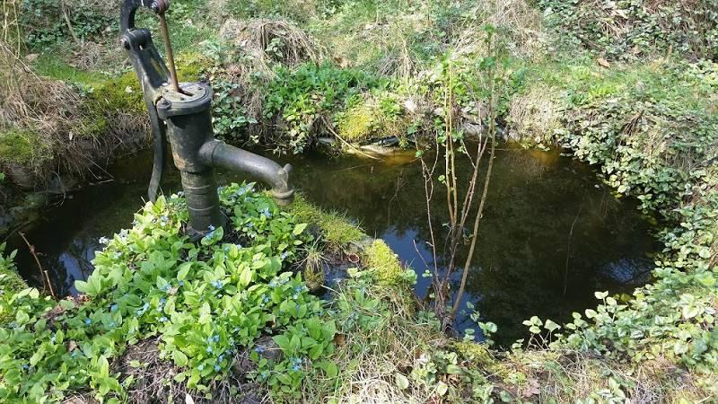 haus-anna-elbe-biber-borghorster-elbwiesen (8)