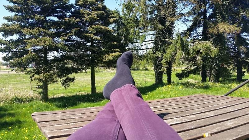 haus-anna-elbe-vierlanden-altengamme (5)