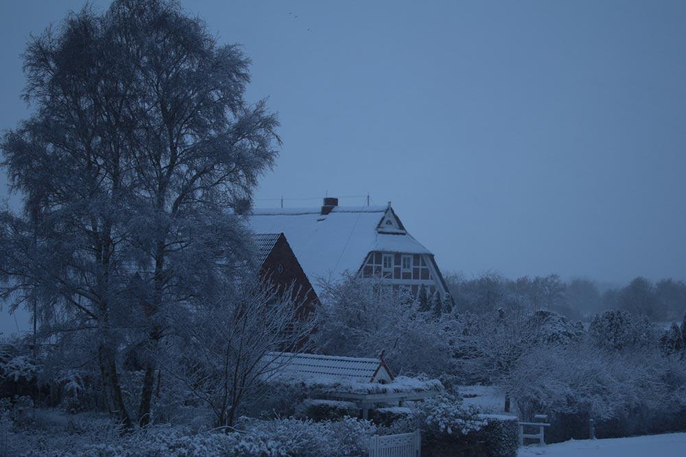 winter-vier-und-marschlande